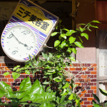 """Stopped Clock"", Tomioka, Fukushima, October 26, 2014: Near Tomioka Station, the clock outside Michi's Beauty Shop has been stopped at 2:46 pm, the time when the earthquake struck in 2011. Nature has not stopped."